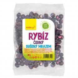 Čierna ríbezľa 20 g Wolfberry